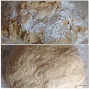 Turn dough onto a floured surface and knead into a loose ball.
