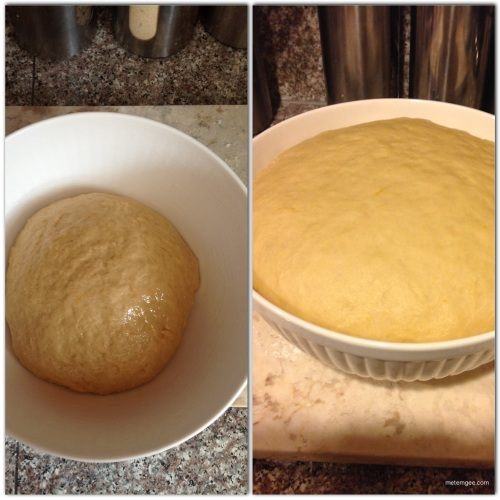 place in a greased bowl, cover with a damp paper towel and let sit until dough doubles in size (about 1 hour).