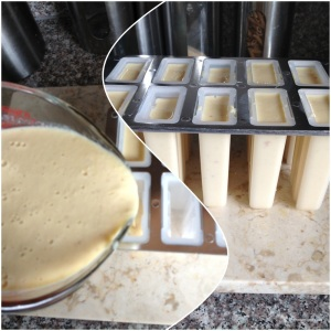 Pour custard into a large bowl or ice pop molds. I got my mold from Target online for about $12.00